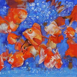 魚譜-goldfish.jpg
